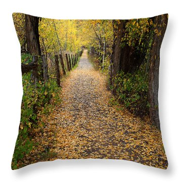 The Aspen Trail Throw Pillow