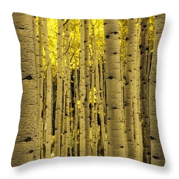 The Aspen Tree Forest Throw Pillow