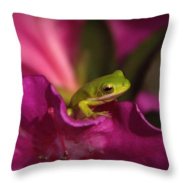 The Azalea Bed Throw Pillow by Charlotte Schafer