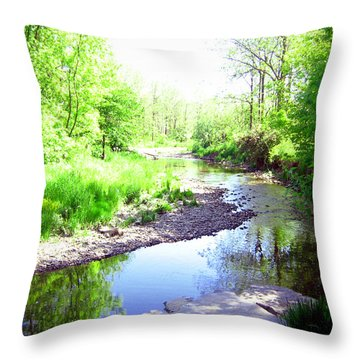 The Babbling Stream Throw Pillow