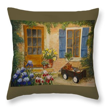 The Back Door Throw Pillow