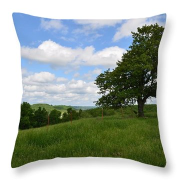 The Back Field Throw Pillow