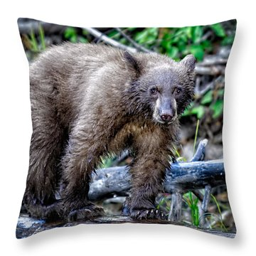 Throw Pillow featuring the photograph The Balance Beam by Jim Thompson