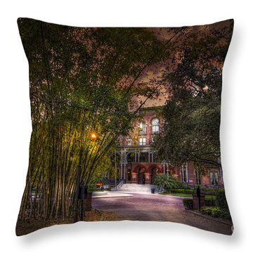 The Bamboo Path Throw Pillow by Marvin Spates