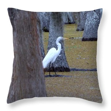 Throw Pillow featuring the photograph The Bayou's White Knight by John Glass
