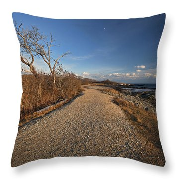 The Beaten Path Throw Pillow by Eric Gendron