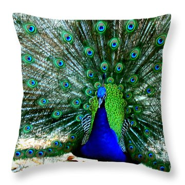 Throw Pillow featuring the photograph The Beautiful Plumage by Kathy  White