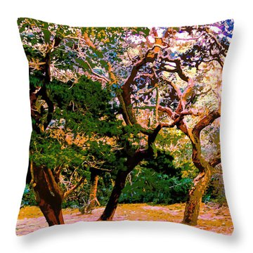 The Beautiful Trees Of Florida Throw Pillow