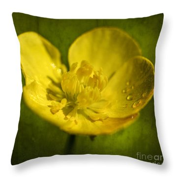 the beauty inside II Throw Pillow by Hannes Cmarits
