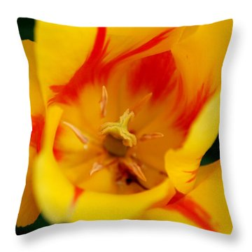 The Beauty Inside Throw Pillow by Jennifer Ancker