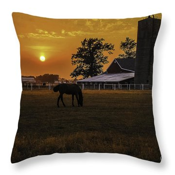 The Beauty Of A Rural Sunset Throw Pillow
