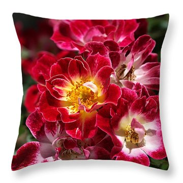 The Beauty Of Carpet Roses  Throw Pillow