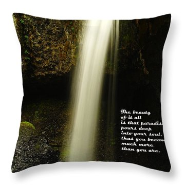 The Beauty Of It All Throw Pillow by Jeff Swan