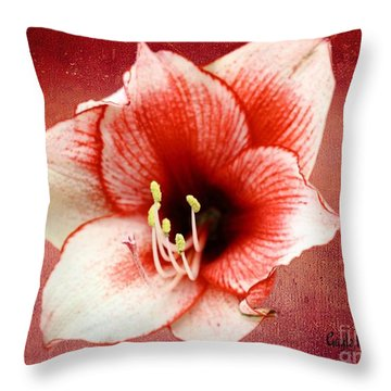 Throw Pillow featuring the digital art The Beauty Of Nature by Gayle Price Thomas