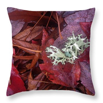 The Beauty Of Rain Throw Pillow by Gwyn Newcombe