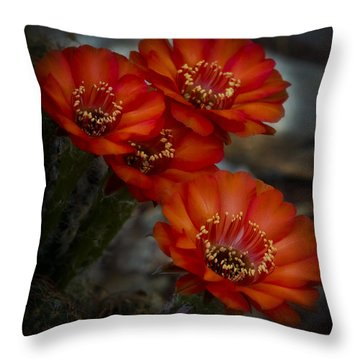 The Beauty Of Red Throw Pillow