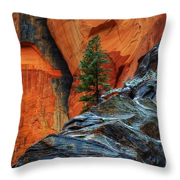 The Beauty Of Sandstone Zion Throw Pillow