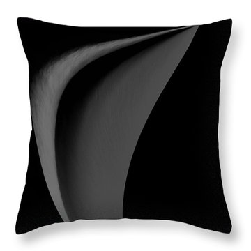 Beauty Of Simplicity Throw Pillow