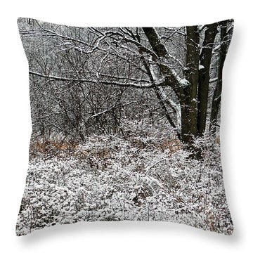 The Beauty Of Winter Throw Pillow by Aimee L Maher Photography and Art Visit ALMGallerydotcom