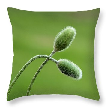 The Beauty Within Throw Pillow by Tom Druin