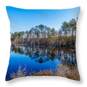 The Beaver Pond Two Throw Pillow