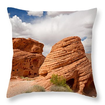 The Beehives Throw Pillow by Jane Rix