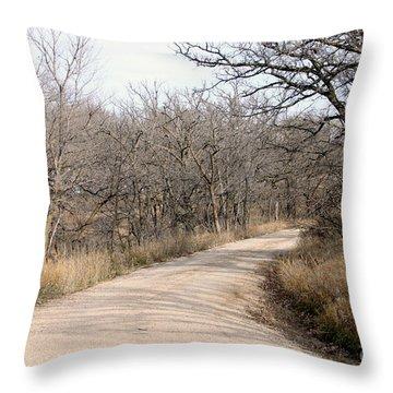The Bend Throw Pillow by Lori Tordsen