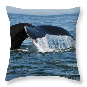 The Big Blue In The Bigger Blues... Throw Pillow