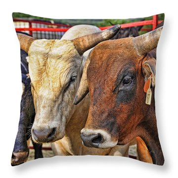 The Big Bull Strategy Meeting Throw Pillow by Kenny Francis