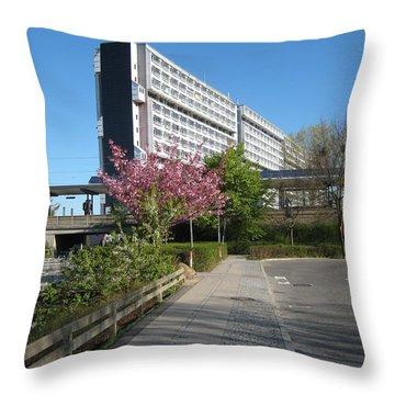 Throw Pillow featuring the photograph The Big House by Susanne Baumann