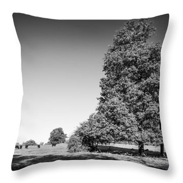 The Big Tree Throw Pillow