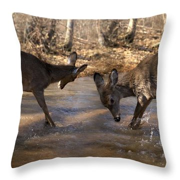 The Bill And Mike Show Throw Pillow by Bill Stephens
