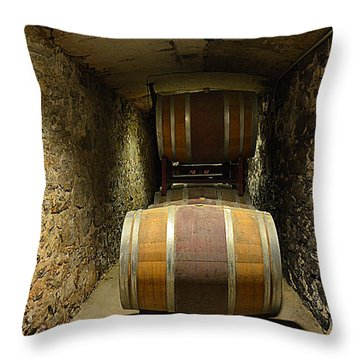 The Biltmore Estate Wine Barrels Throw Pillow by Luther Fine Art