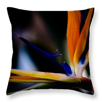 The Bird Of Paradise Throw Pillow by David Patterson