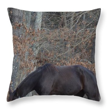 Throw Pillow featuring the photograph The Black by Maria Urso
