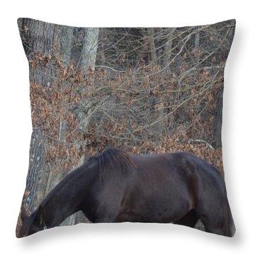 The Black Throw Pillow by Maria Urso