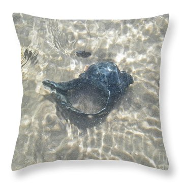 The Black Seashell Throw Pillow by Mother Nature