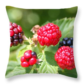 The Blackberries Are Coming-the Blackberries Are Coming Throw Pillow by Margaret Newcomb