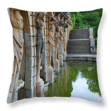 The Blenheim Six Throw Pillow