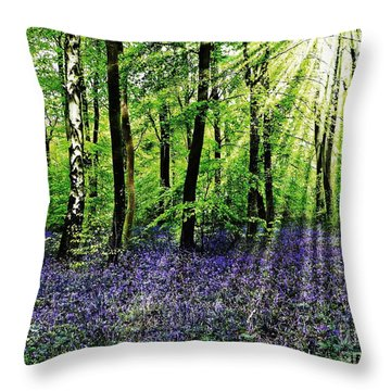 The Bluebell Woods Throw Pillow by Morag Bates