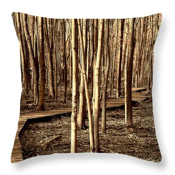 The Boardwalk Throw Pillow by Kathleen Stephens