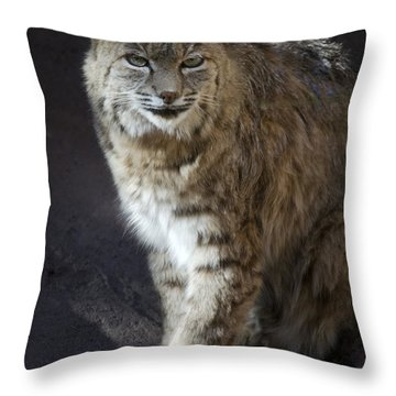 The Bobcat Throw Pillow by Saija  Lehtonen