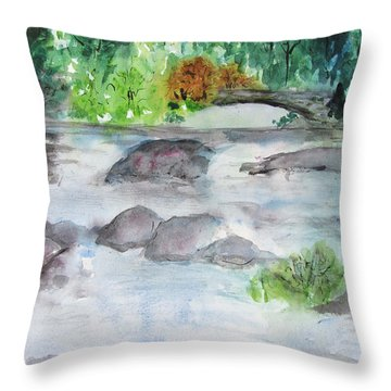 The Bog On Tupper Lake Throw Pillow