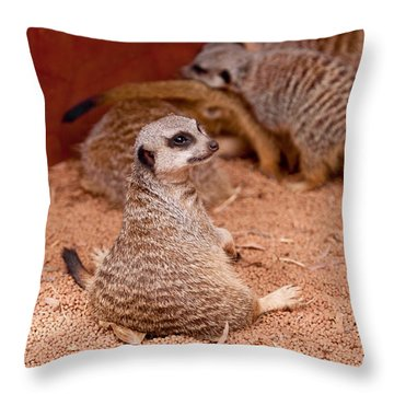 The Bored Babysitter Throw Pillow by Michelle Wrighton
