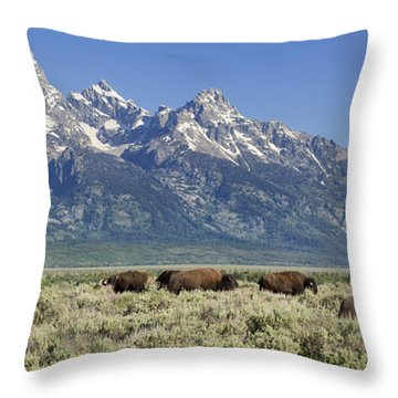 The Boys Club Of Grand Teton Throw Pillow by Sandra Bronstein