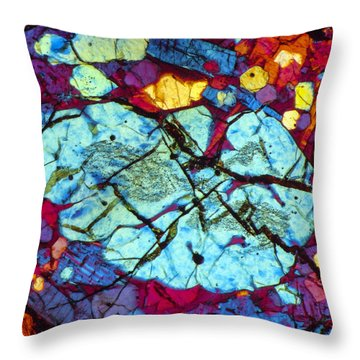 The Brain Throw Pillow by Tom Phillips