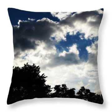 Throw Pillow featuring the photograph The Break Up by Deborah Fay