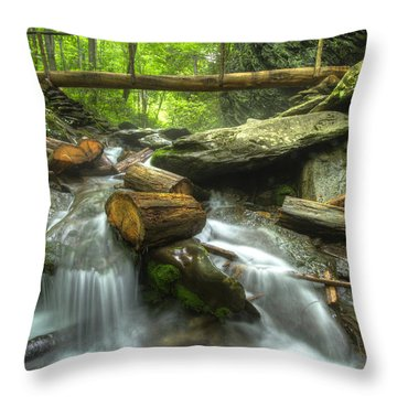 The Bridge At Alum Cave Throw Pillow by Debra and Dave Vanderlaan