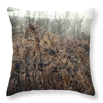The Brown Side Of Winter Throw Pillow