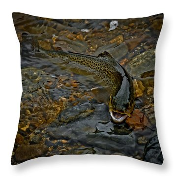 The Brown Trout Throw Pillow